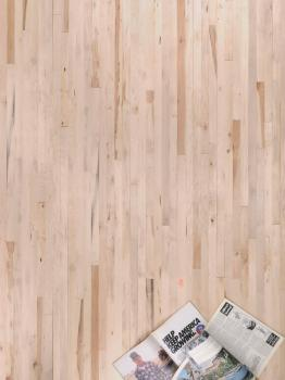 American Hard Maple Flooring (W38) / Standard