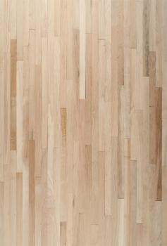 Oak Parquet Flooring (XL)